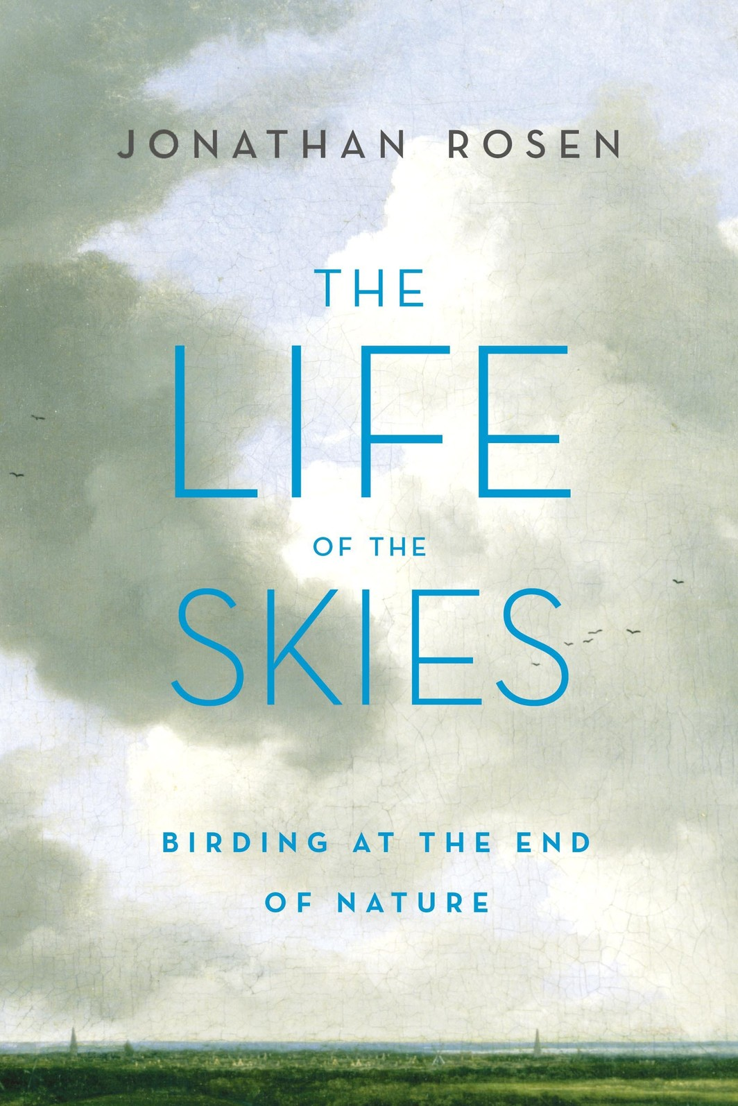 The cover of The Life of the Skies