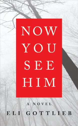 The cover of Now You See Him: A Novel