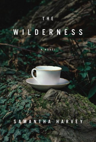The cover of The Wilderness: A Novel