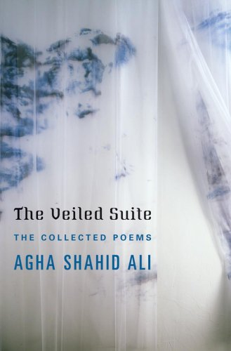 The cover of The Veiled Suite