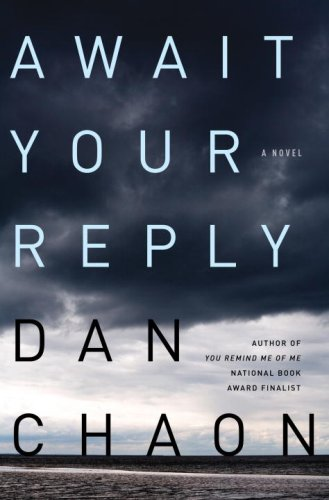 The cover of Await Your Reply: A Novel