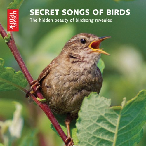 The cover of Secret Songs of Birds: The Hidden Beauty of Birdsong Revealed (British Library)
