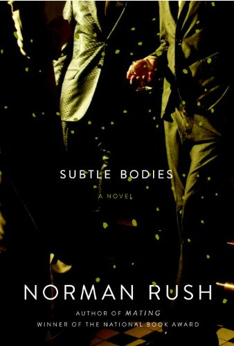 The cover of Subtle Bodies