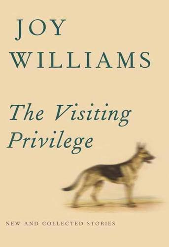 The cover of The Visiting Privilege: New and Collected Stories