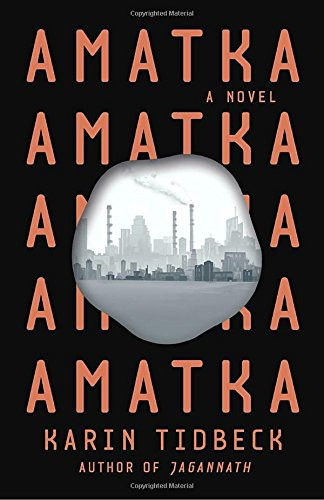 The cover of Amatka