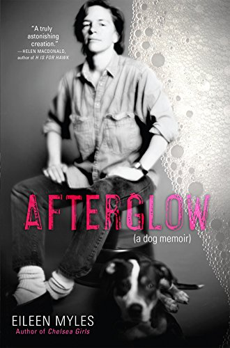 The cover of Afterglow (a dog memoir)