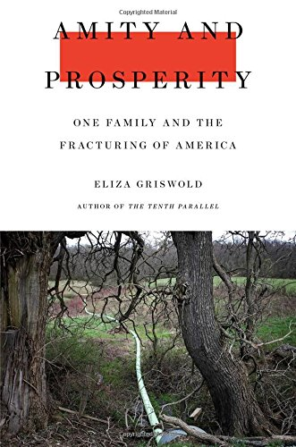 The cover of Amity and Prosperity: One Family and the Fracturing of America