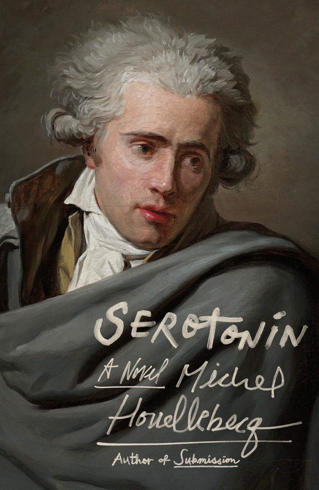 The cover of Serotonin