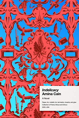 The cover of Indelicacy
