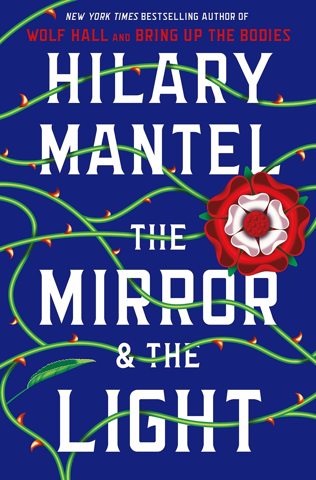 The cover of The Mirror & the Light