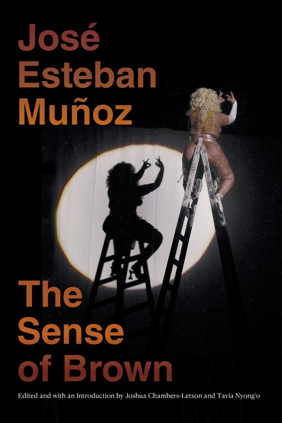 The cover of The Sense of Brown