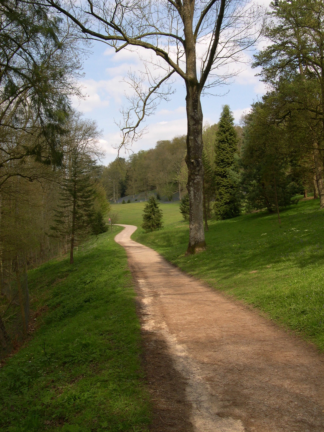 Path at Wakehurst Place Garden, England, 2004.
