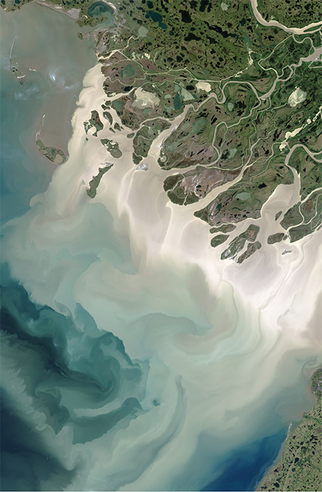 Satellite image of the Mackenzie River and the Atlantic Ocean, Northwest Territories, Canada, 2017.