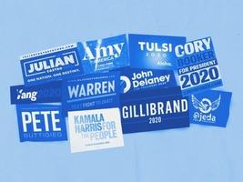 OMNIVORE: The 2020 Democratic presidential field thumbnail