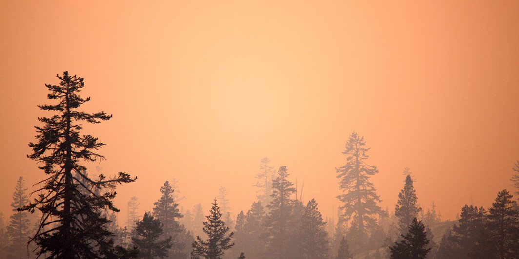 Forest fire at Yosemite National Park, California, August 24, 2013. Laurentia Romaniuk/Flickr